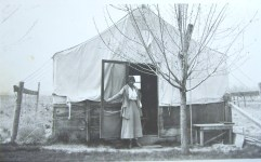 croped tent