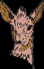 deer-46035_640