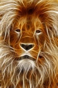lion-66898_640